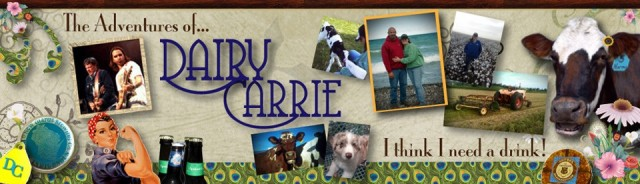 Dairy Carrie blog - a great place to look for simple, effective blogging topics