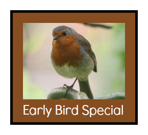 early-bird-special-2