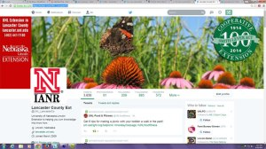 Twitter profile update