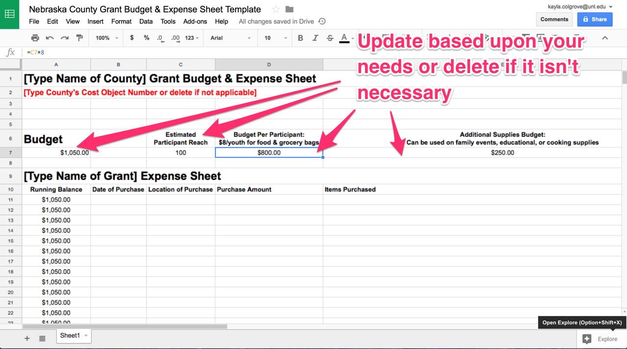 Modify The Document For Your Needs Based Upon The Grant Before Creating The  Budget And Expense Google Sheet For Each County Site.  Expense Sheets Template